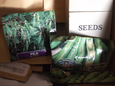 Allotment Growing - Storing Seeds