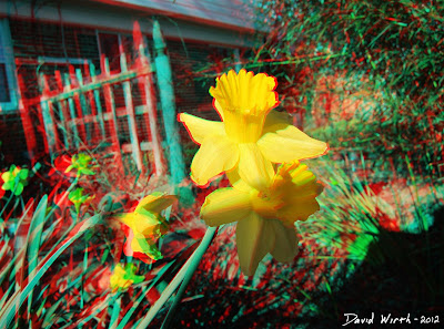 3D Flower Garden Yellow