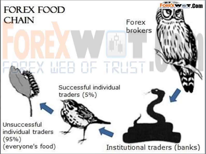 Forex institutional trades