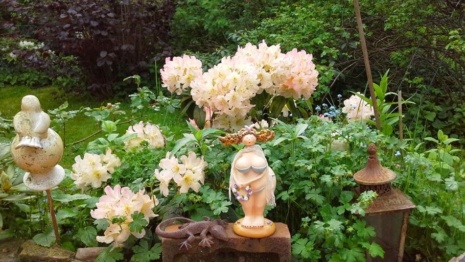 Madame in voller Blüte