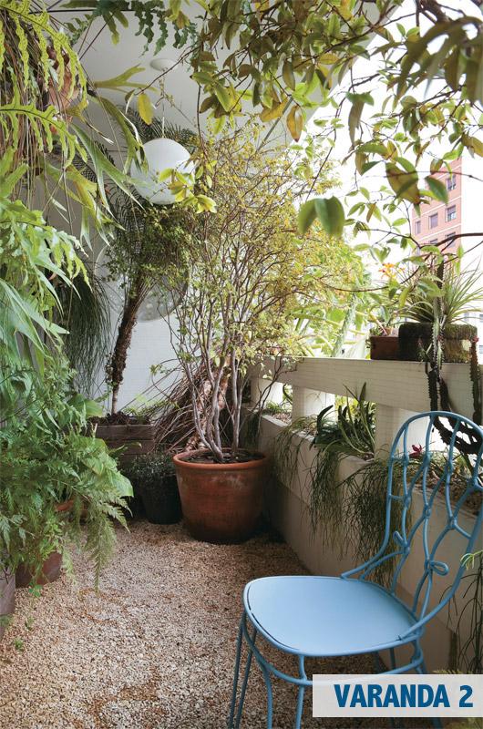 terraco jardins clinica:Espécies tropicais, como samambaia e renda-portuguesa, convivem