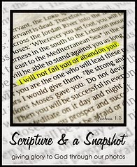 http://www.glimpseofourlife.com/2014/03/scripture-and-snapshot.html