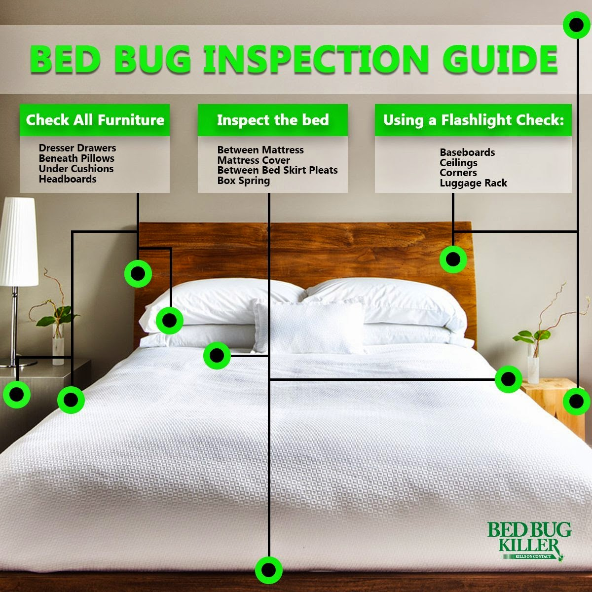 bed bugs eradication tips
