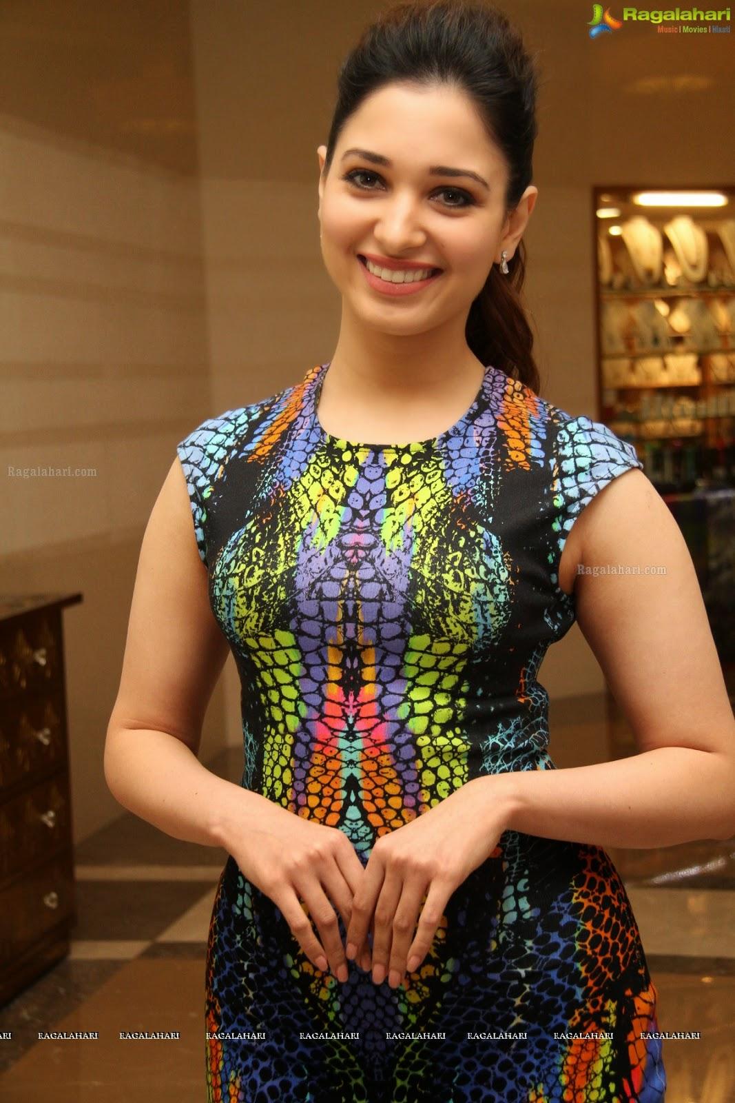 wsww: tamil n telugu actress tamanna bhatia cute hot launches celkon