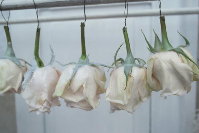 in Wachs getauchte Rosen