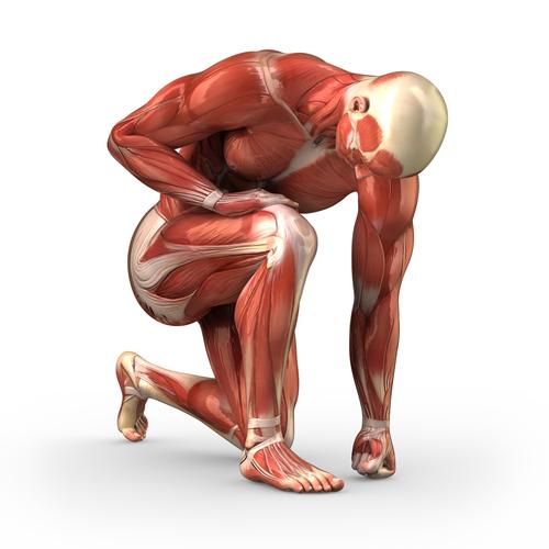 Fisioterapia: El Dolor Muscular Tardío (DOMS)