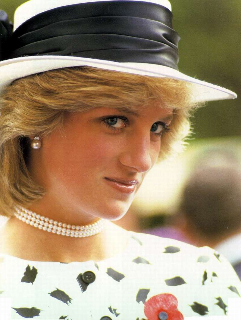 Princess Diana And Landmines Campaign