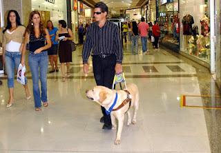 Persona con ceguera guiado por perro guía
