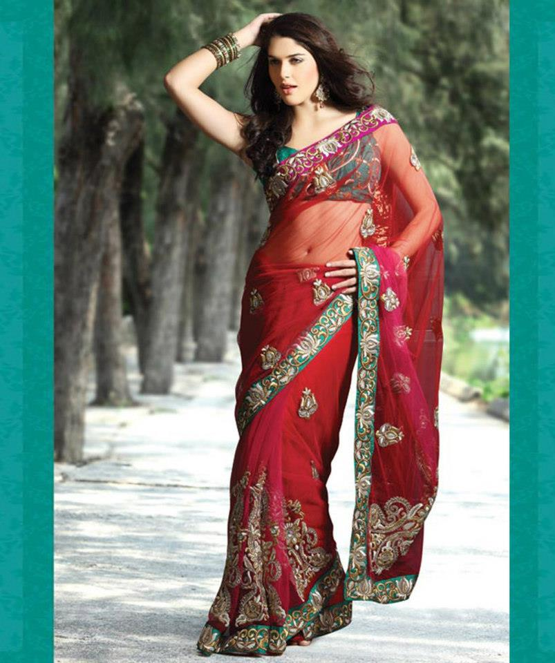 Bollywood Actress Saree Fashion Designs ~ Ramkrushna Embroidery