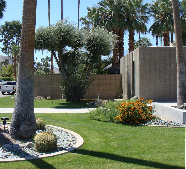 Emerson stewart williams palm springs modern architecture for Palm springs landscape design