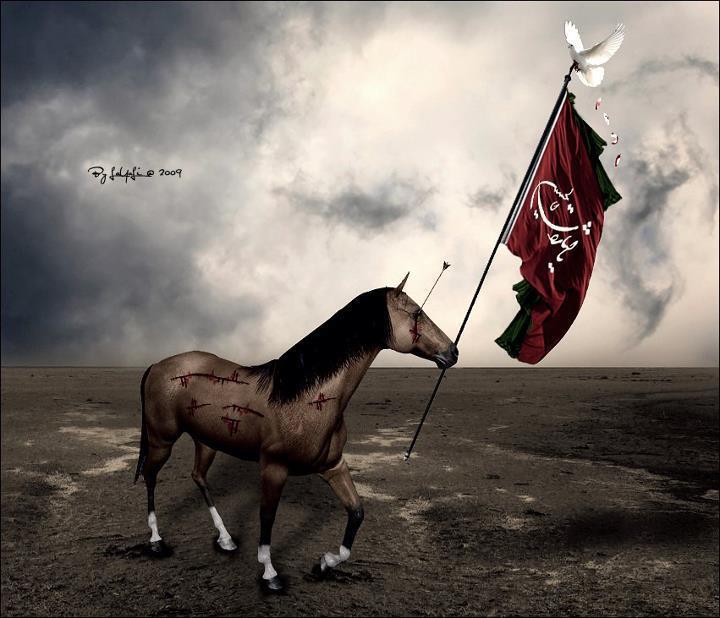 2011-11-27 ~ Labaik Ya Hussain a.s