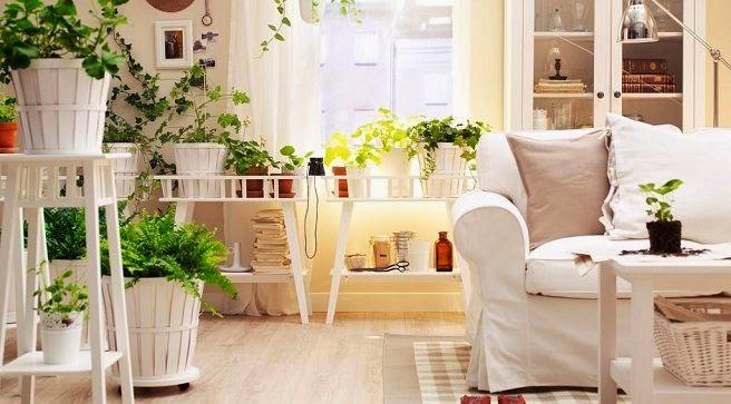 Salón decorado con elementos vegetales y macetas de Ikea