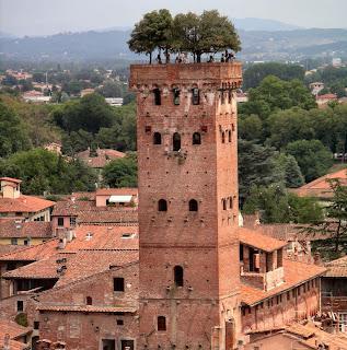 Torre guinigi con lecci