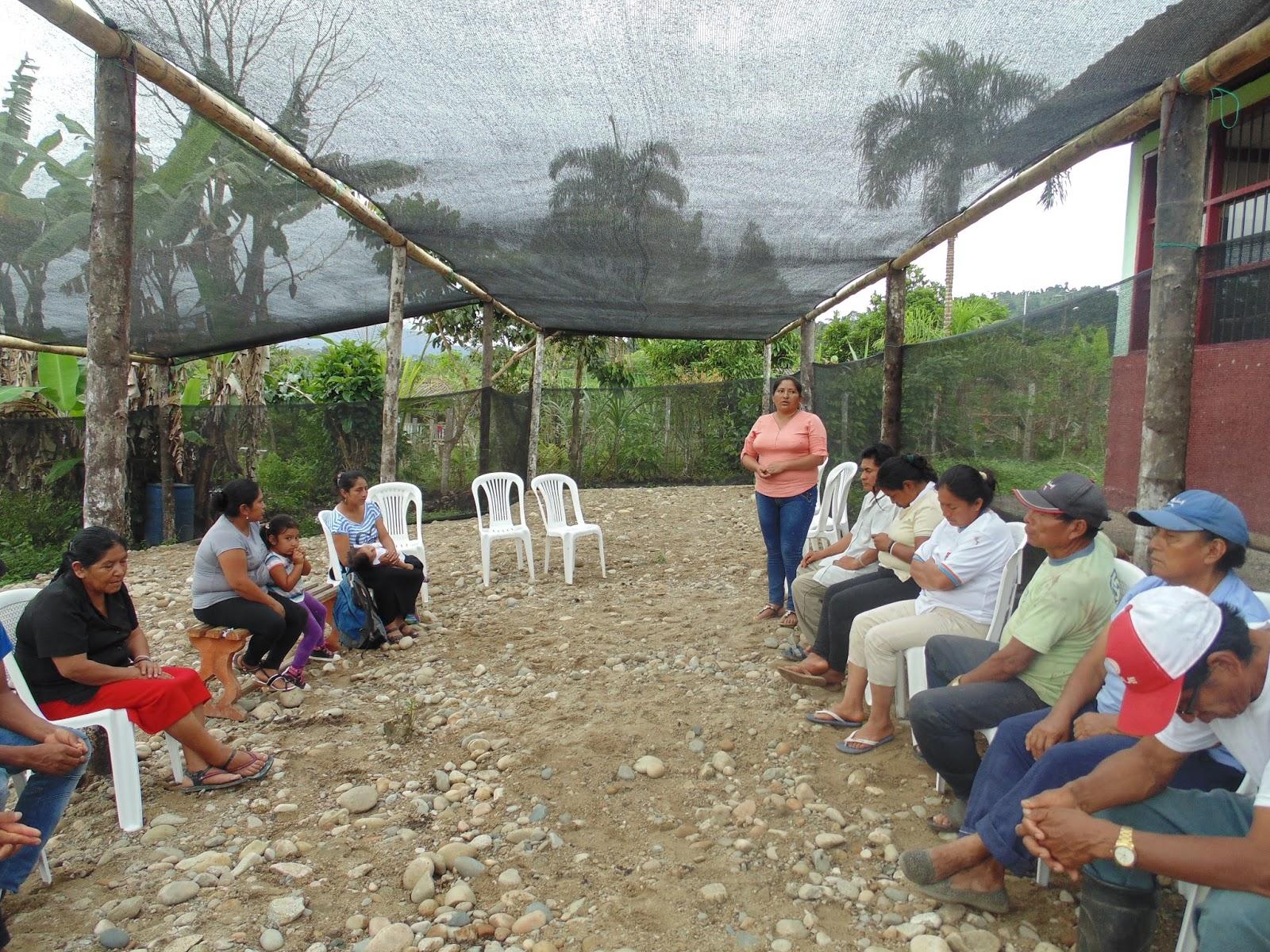 Zamora chinchipe parroquia nuevo para so se fortalece con for Viveros en zamora