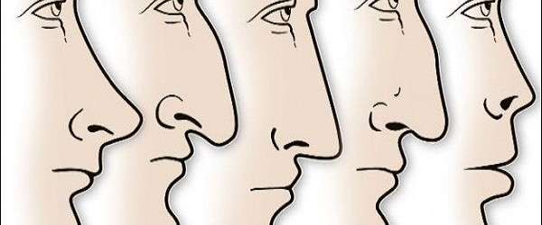 What Your Nose Shape Reveals about Your Personality