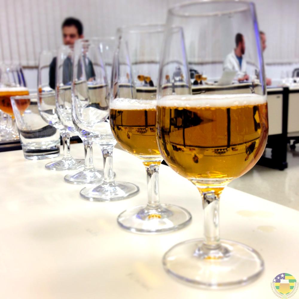 O estudo das cervejas e suas características - AcervA Goiana