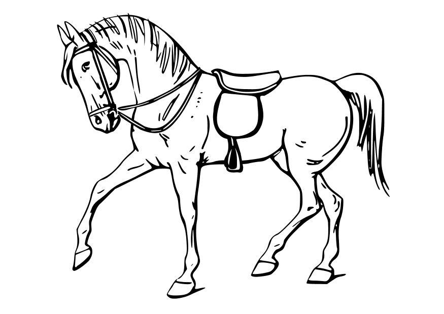 Dibujos niños con caballo - Imagui