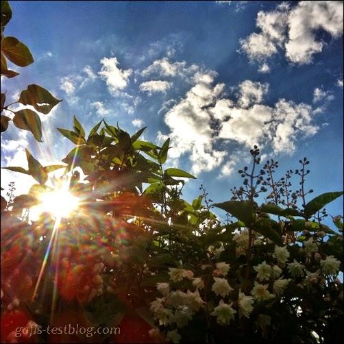 Laß die Sonne in dein Herz