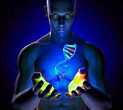 inmortalidad en humanos