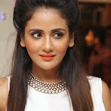 Parul Yadav Photos at South Scope Calendar 2014 Launch Photos 252836%2529