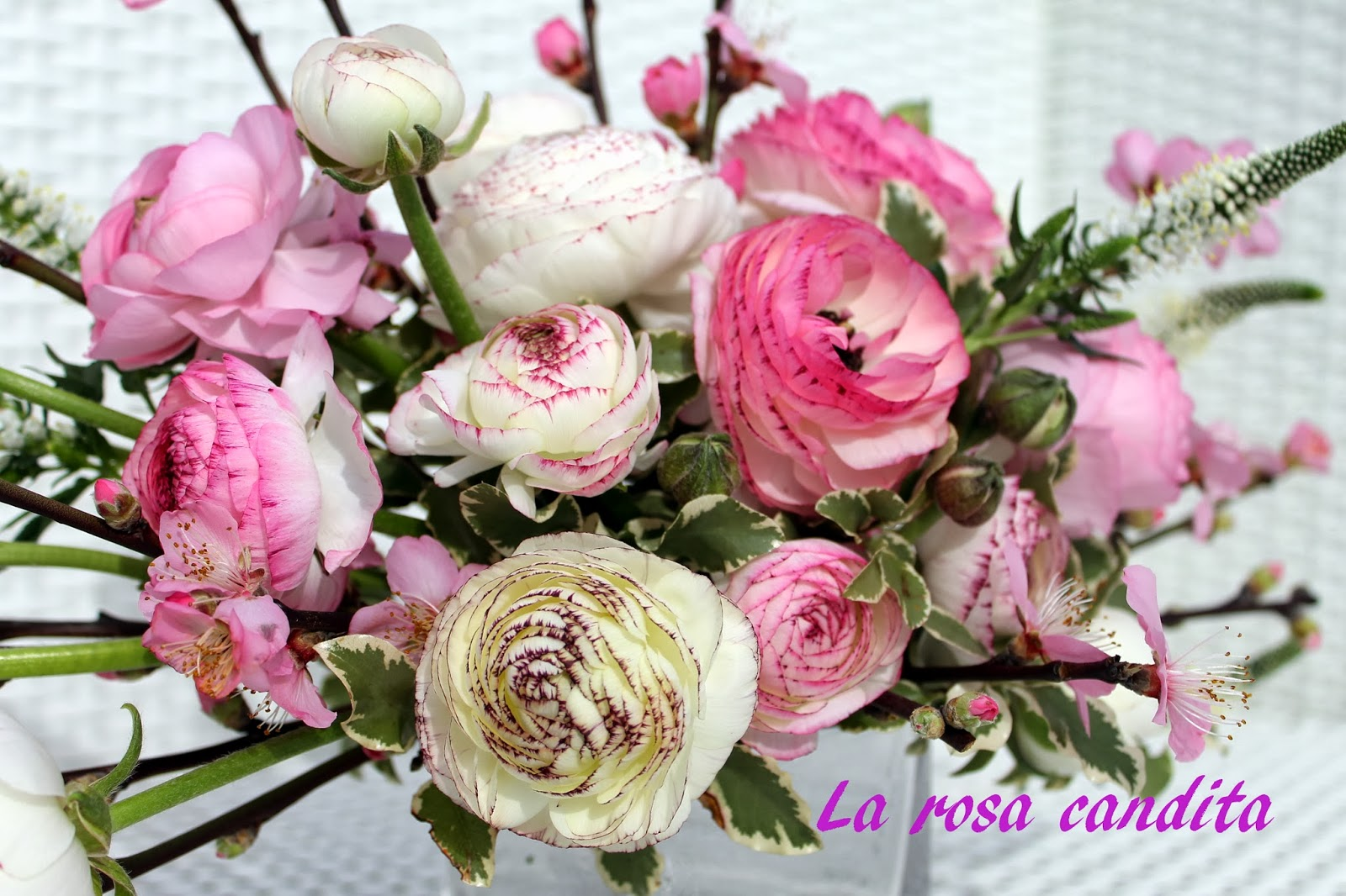 Foto mazzi di fiori particolari for Disegni del mazzo del cortile