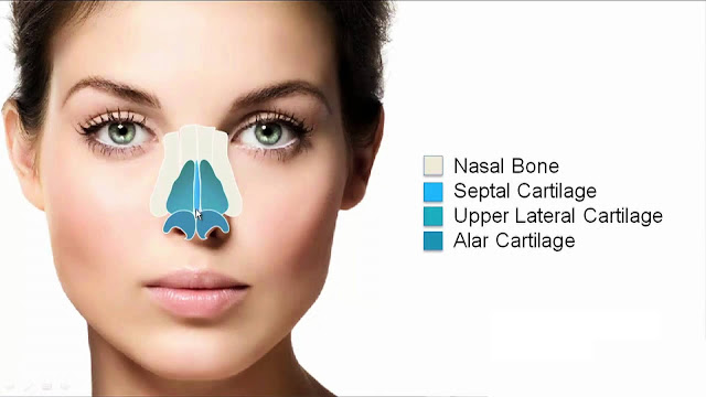 Nose Surgery/ Rhinoplasty