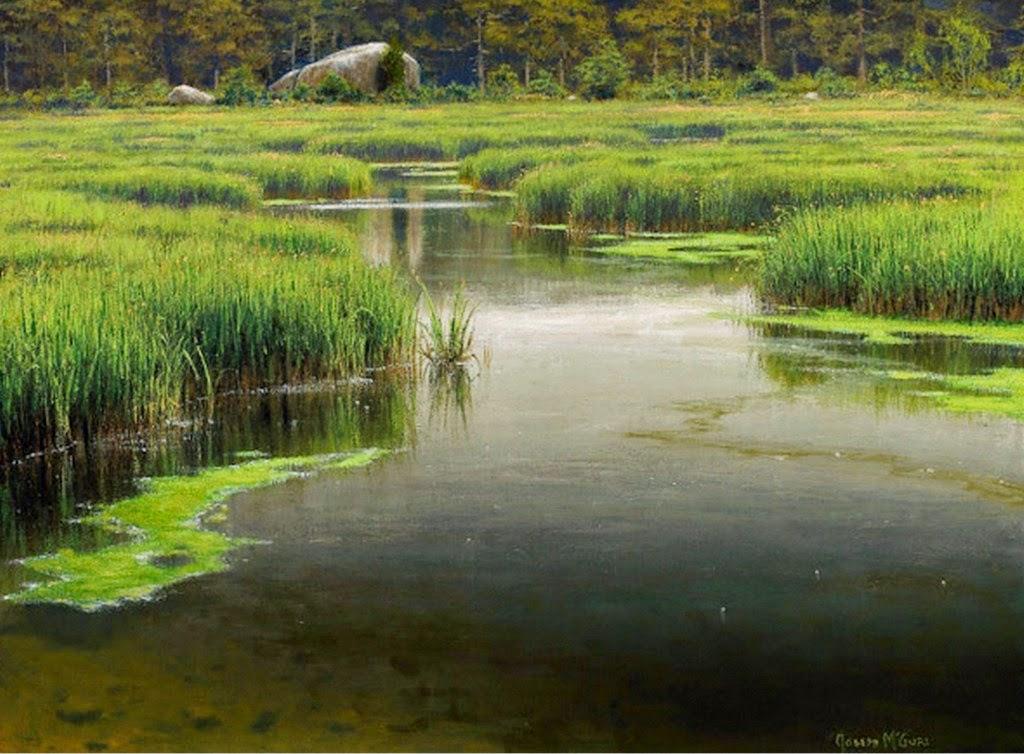paisajes-naturales-con-rios