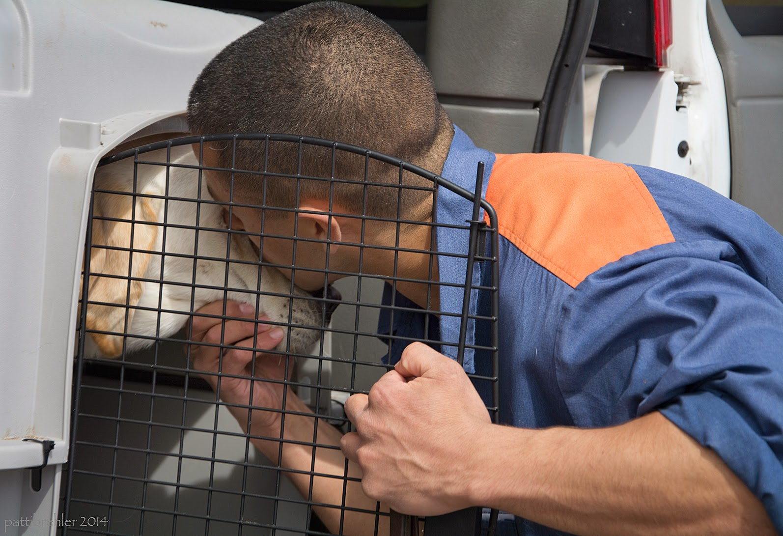 The man in the prison blue uniform is leaning in toward a yellow lab that is inside a dog airline crate. The man is gripping the wire door with his left hand and holding the jaw of the lab with his right hand, his face pressed against the face of the dog.