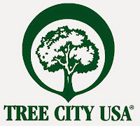 A Tree City USA