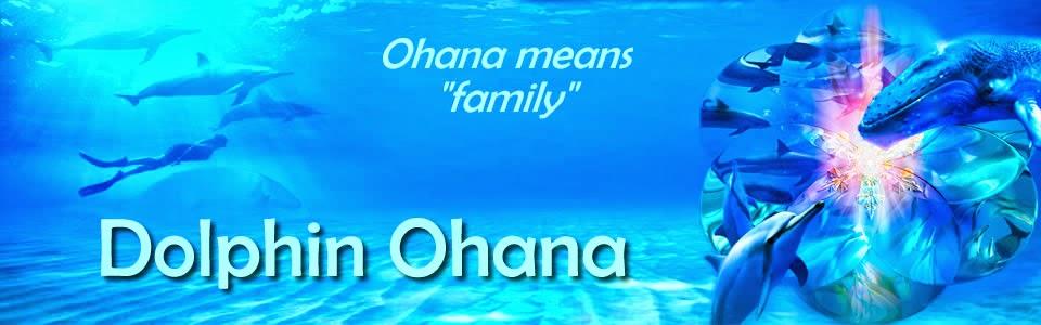 Dolphin Ohana