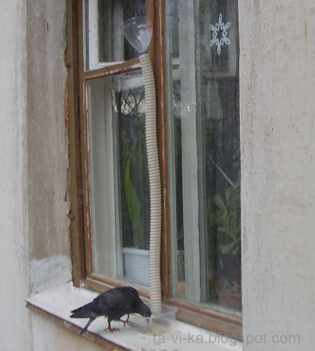 Кормушки голубей своими руками