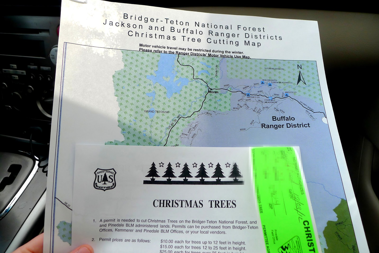 Mountain Living Adventures: Cutting Down Our Own Christmas Tree