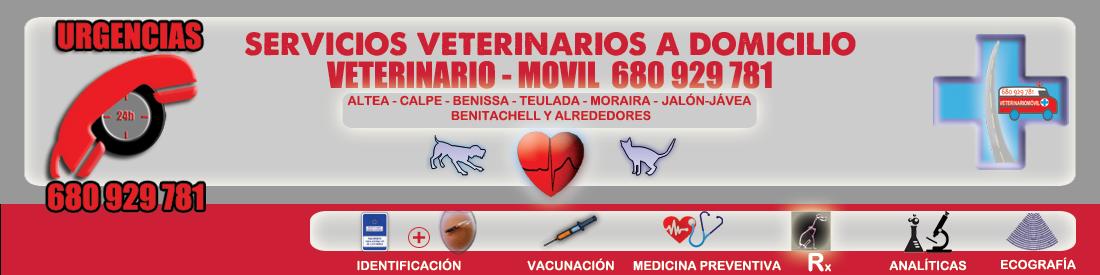 VETMOVIL- Veterinarios Costa Blanca