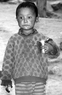 Ladakh, 1991