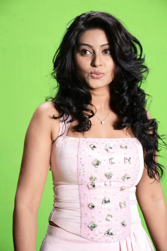 Sneha new hot photos glamour images