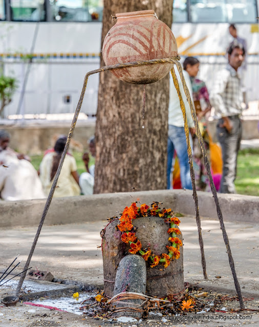 Sugar syrup over Shivling Harshat Mata Temple Abhaneri