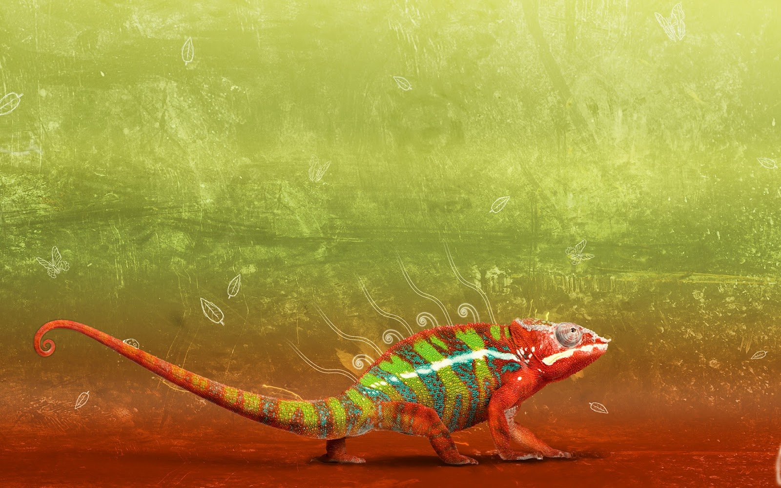 http://4.bp.blogspot.com/-5fhOkeamLQ0/T7Fmo_OCtyI/AAAAAAAAAZo/f8g3VcN13XE/s1600/Iguana-animal-creative-abstract-green-creative-wallpaper.jpg
