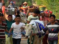 Tradisi Unik Masyarakat Indonesia Menjelang Idul Adha