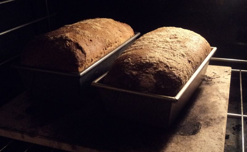 Ezekiel Bread My Interpretation