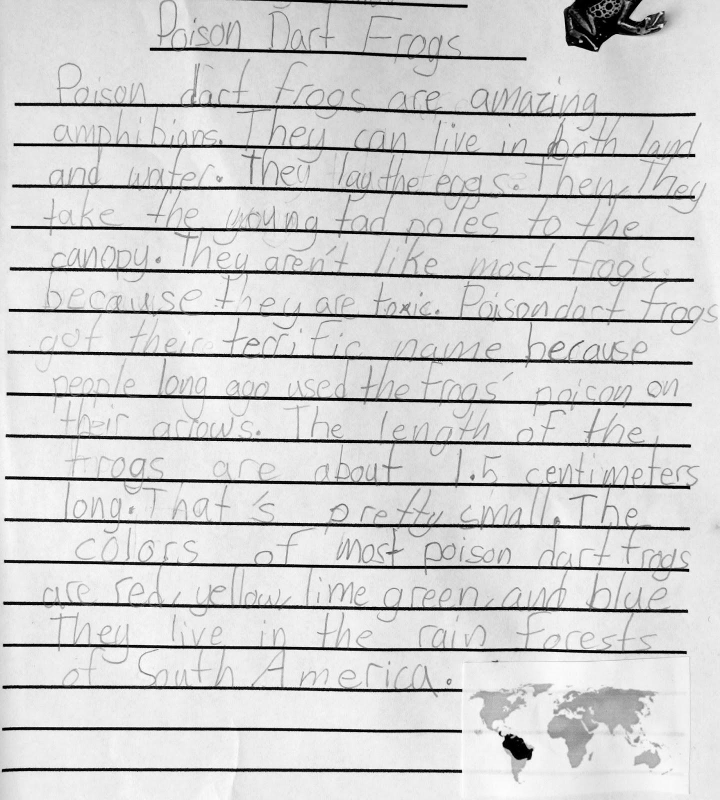 Ecce writing essay