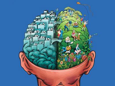 malos habitos que dañan el cerebro, hemisferio izquierdo analitico, hemiferio derecho creativo del cerebro, comprueba tu edad cerebral gratis