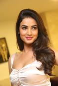Sonal Chauhan sizzling photo shoot-thumbnail-18