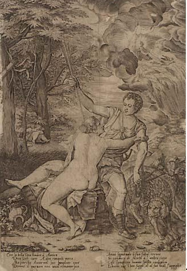 Was Shakespeare inspired by Titian s  Venus and Adonis  Venus And Adonis Titian
