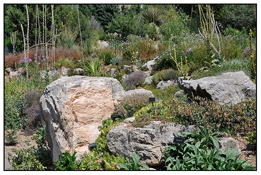 The Alpine Rock Garden At The Denver Botanic Gardens