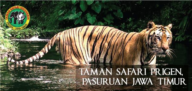 Taman Safari 2 Prigen
