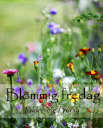 BLOOMING FRIDAY