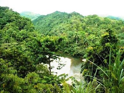 Parque Nacional Alejandro de Humbolt en Guantánamo