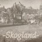Du finner Skogland i Boligblogg-arkivet hos Boligpluss