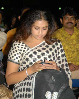 Tamil Actress Meena in saree (1)
