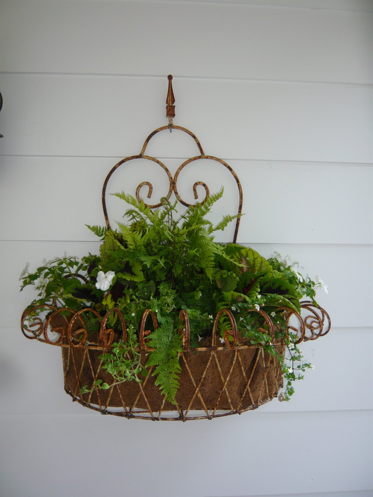 designing domesticity thrifty finds iron wall planter. Black Bedroom Furniture Sets. Home Design Ideas